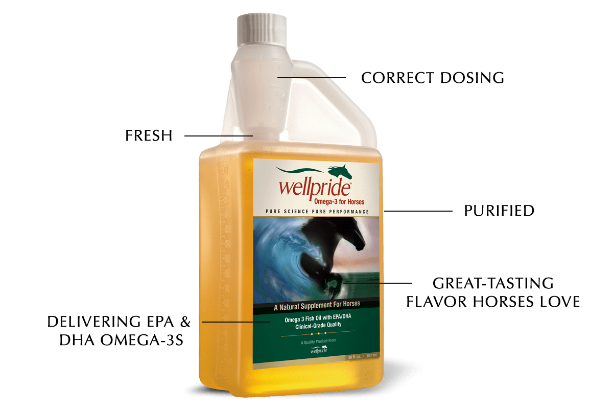 Wellpride Fish Oil for Horses Benefits